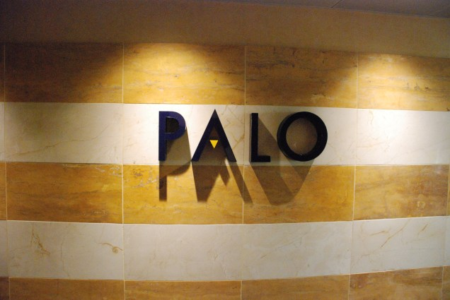 Palo Blog 1 JR